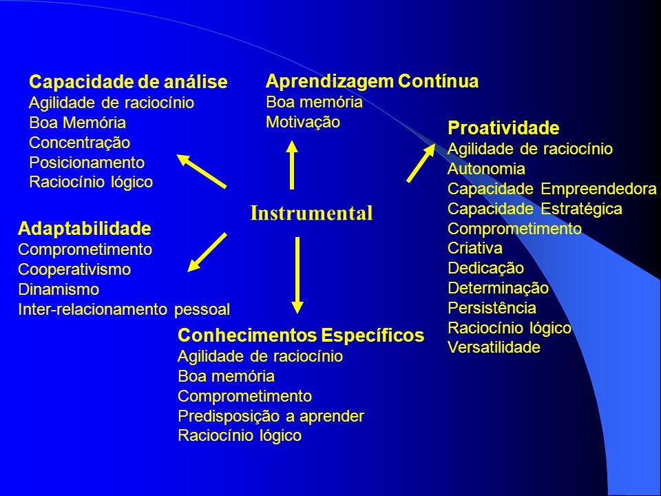 Capacidade de análise Agilidade de raciocínio Boa Memória Concentração Posicionamento Raciocínio lógico Adaptabilidade Comprometimento Cooperativismo