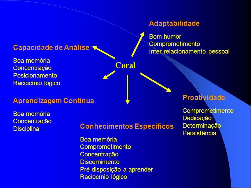 Capacidade de Análise Boa memória Concentração Posicionamento Raciocínio lógico Adaptabilidade Bom humor Comprometimento Inter-relacionamento pessoal