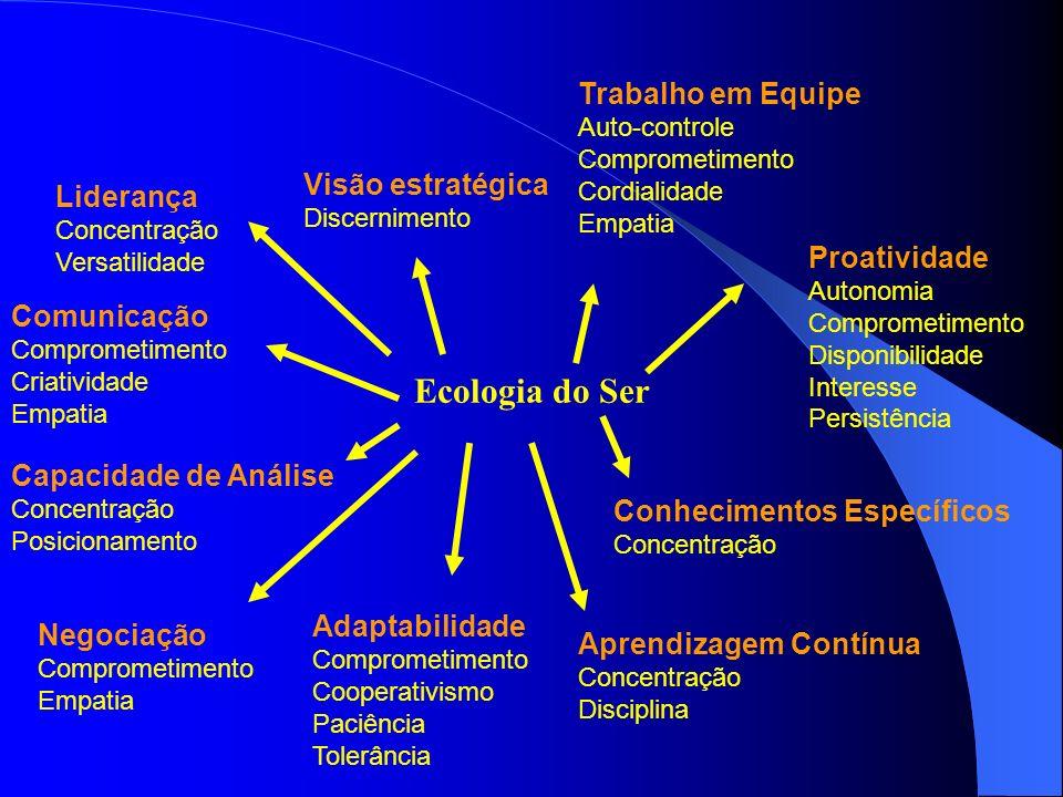 Ecologia do Ser Liderança Concentração Versatilidade Visão estratégica Discernimento Trabalho em Equipe Auto-controle Comprometimento Cordialidade Emp