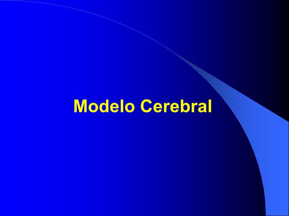 Modelo Cerebral