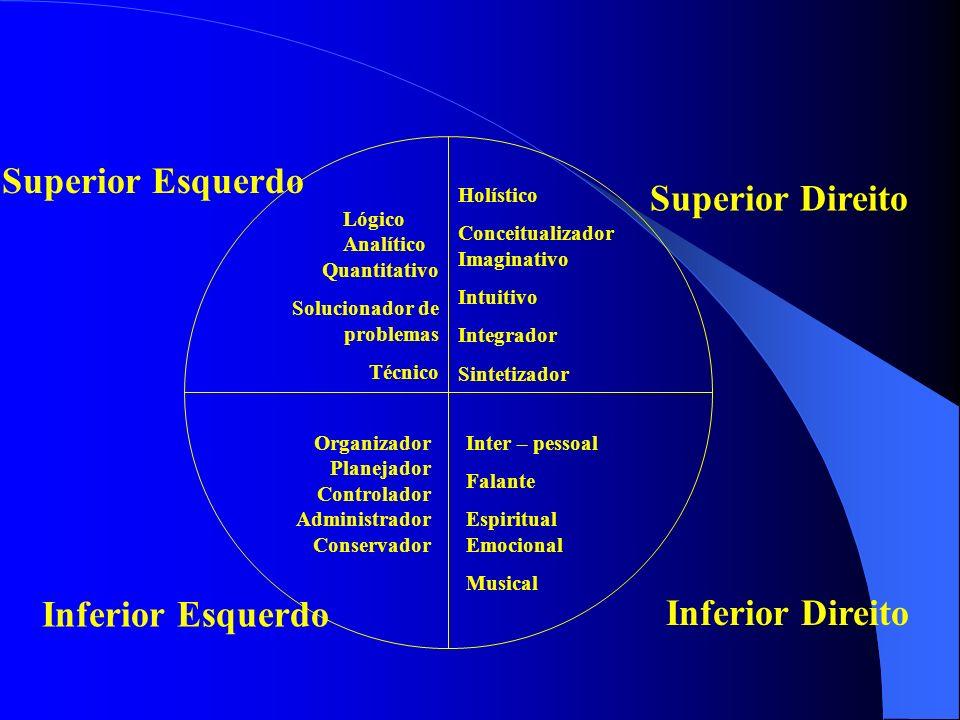Superior Esquerdo Superior Direito Inferior Esquerdo Inferior Direito Lógico Analítico Quantitativo Solucionador de problemas Técnico Holístico Concei
