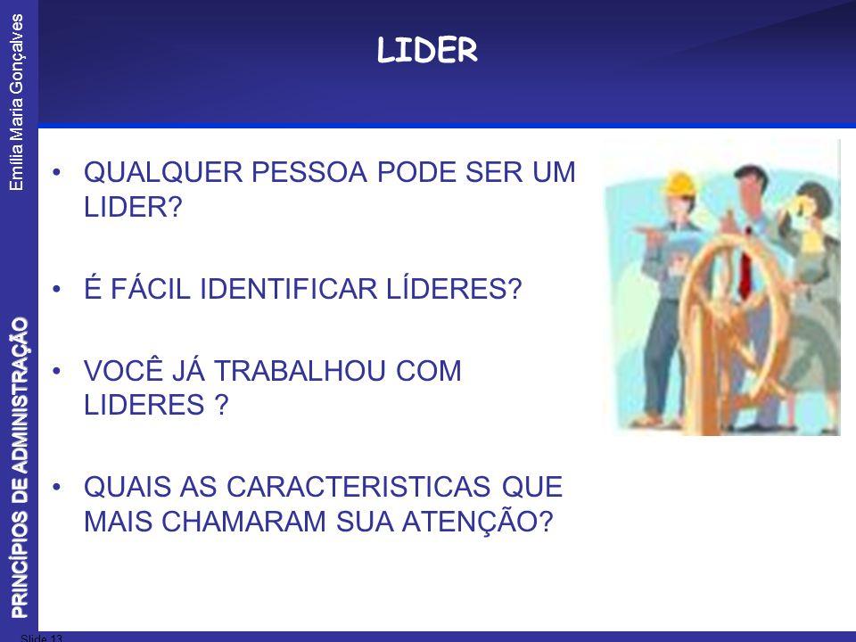 Emília Maria Gonçalves Slide 13 PRINCÍPIOS DE ADMINISTRAÇÃO LIDER QUALQUER PESSOA PODE SER UM LIDER? É FÁCIL IDENTIFICAR LÍDERES? VOCÊ JÁ TRABALHOU CO