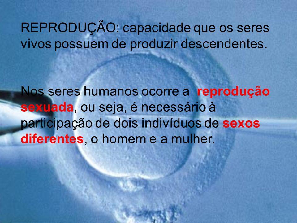 REPRODUÇÃO: capacidade que os seres vivos possuem de produzir descendentes. Nos seres humanos ocorre a reprodução sexuada, ou seja, é necessário à par