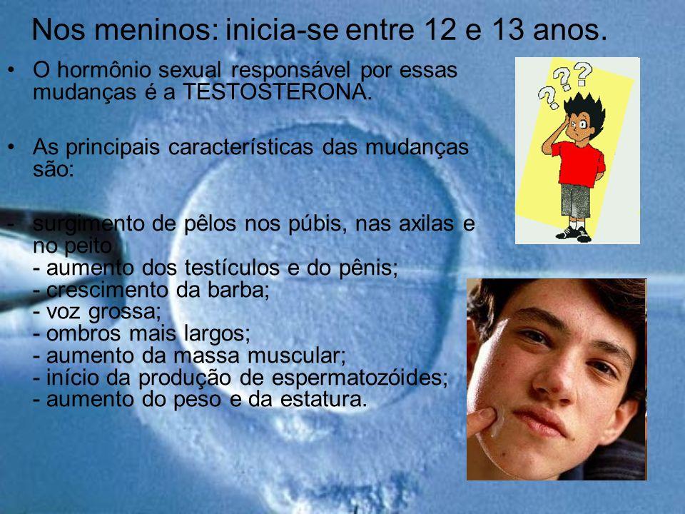 Nos meninos: inicia-se entre 12 e 13 anos. O hormônio sexual responsável por essas mudanças é a TESTOSTERONA. As principais características das mudanç