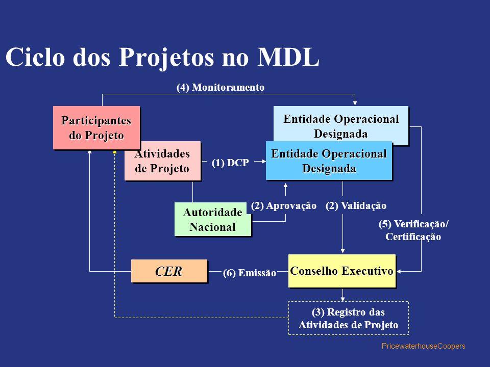 PricewaterhouseCoopers Ciclo dos Projetos no MDL (4) Monitoramento Entidade Operacional Designada Atividades de Projeto Atividades de Projeto Conselho