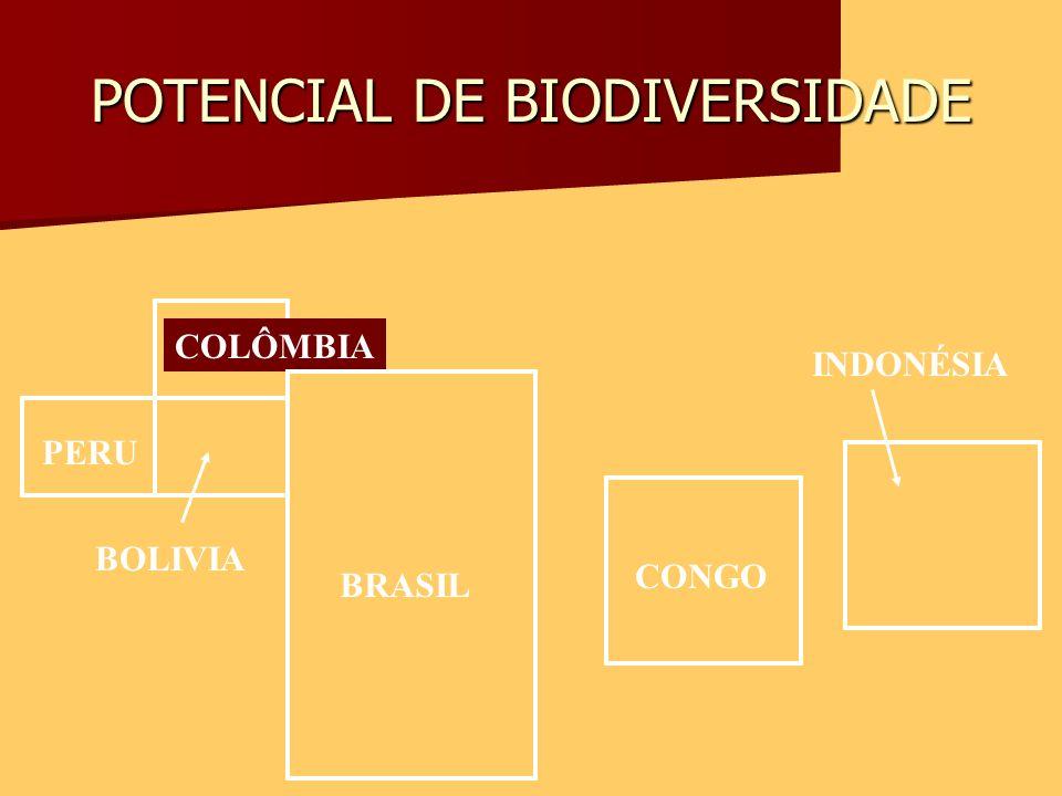 POTENCIAL DE BIODIVERSIDADE BRASIL PERU COLÔMBIA BOLIVIA CONGO INDONÉSIA