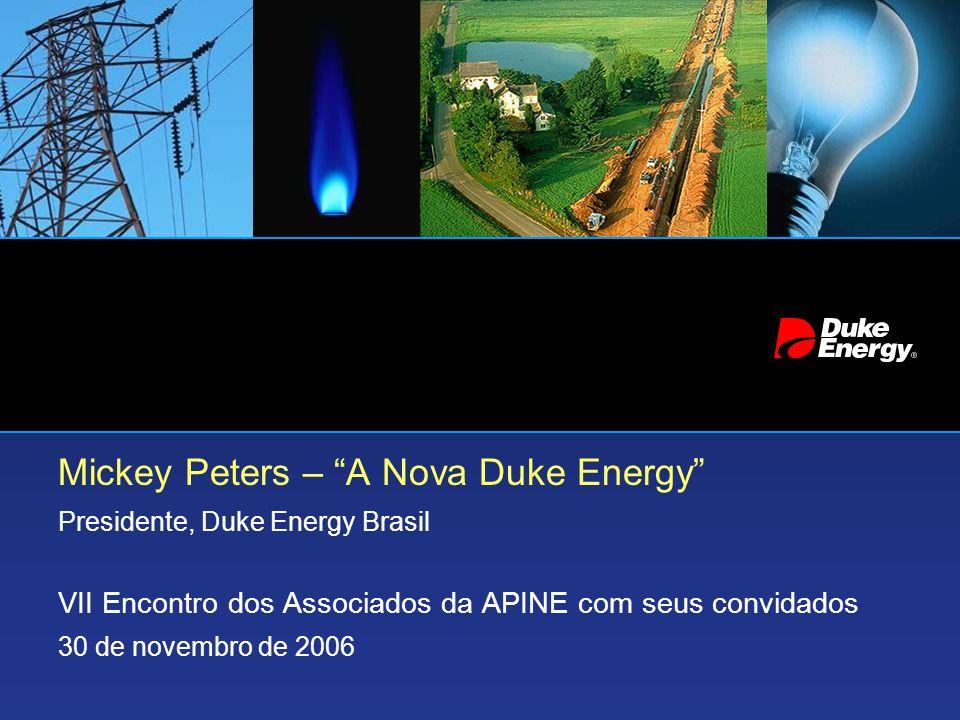 Mickey Peters – A Nova Duke Energy Presidente, Duke Energy Brasil VII Encontro dos Associados da APINE com seus convidados 30 de novembro de 2006