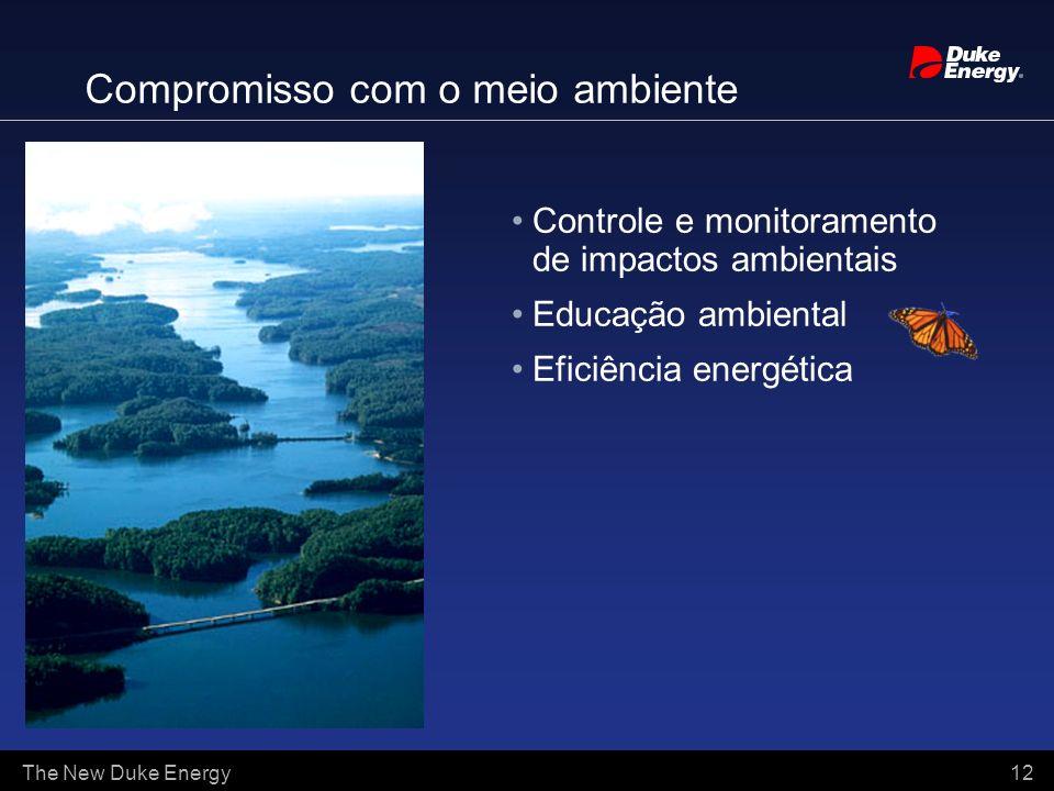 The New Duke Energy 12 Compromisso com o meio ambiente Controle e monitoramento de impactos ambientais Educação ambiental Eficiência energética