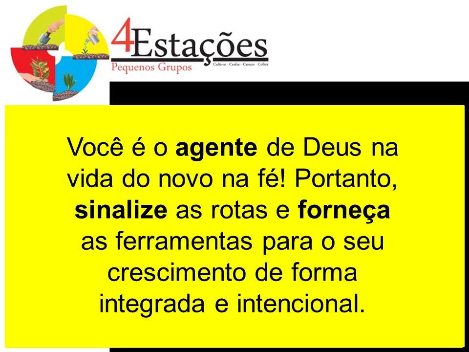 Você é o agente de Deus na vida do novo na fé! Portanto, sinalize as rotas e forneça as ferramentas para o seu crescimento de forma integrada e intenc