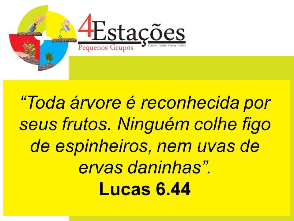 Toda árvore é reconhecida por seus frutos. Ninguém colhe figo de espinheiros, nem uvas de ervas daninhas. Lucas 6.44
