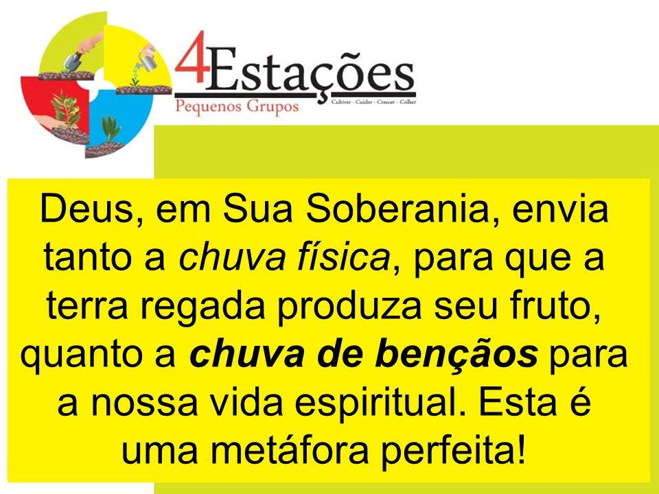 4) Estação - COLHEITA Celebre a colheita dos novos frutos do Senhor!
