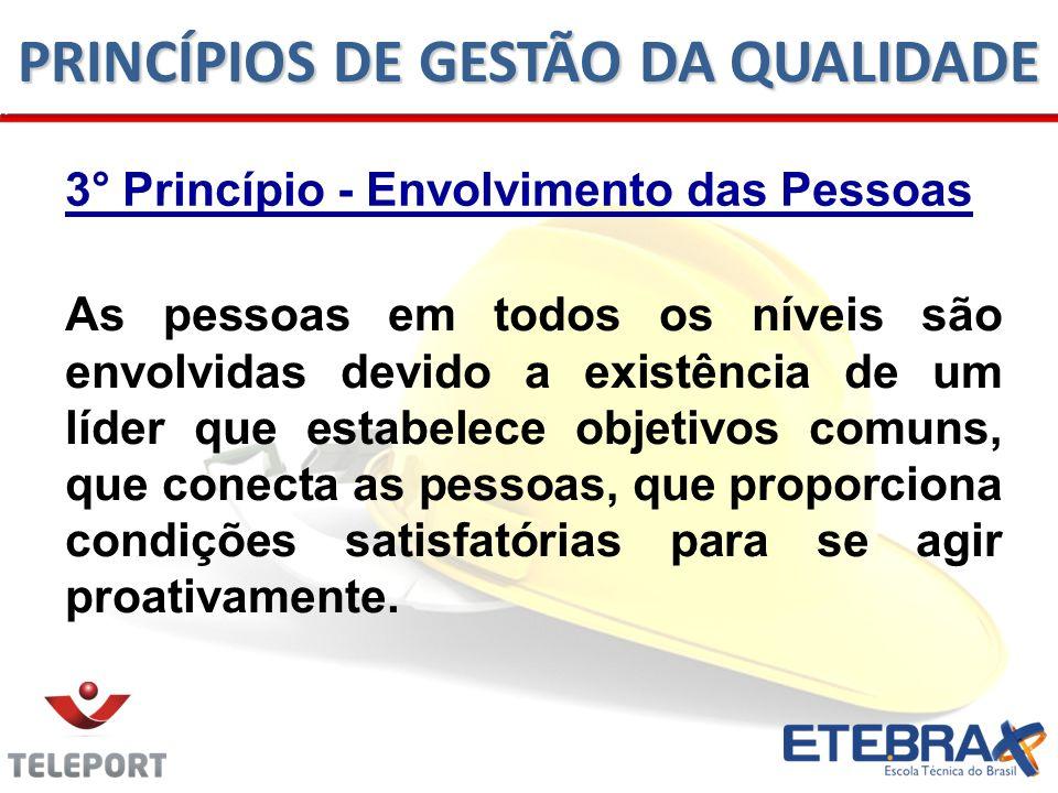 3° Princípio - Envolvimento das Pessoas As pessoas em todos os níveis são envolvidas devido a existência de um líder que estabelece objetivos comuns,