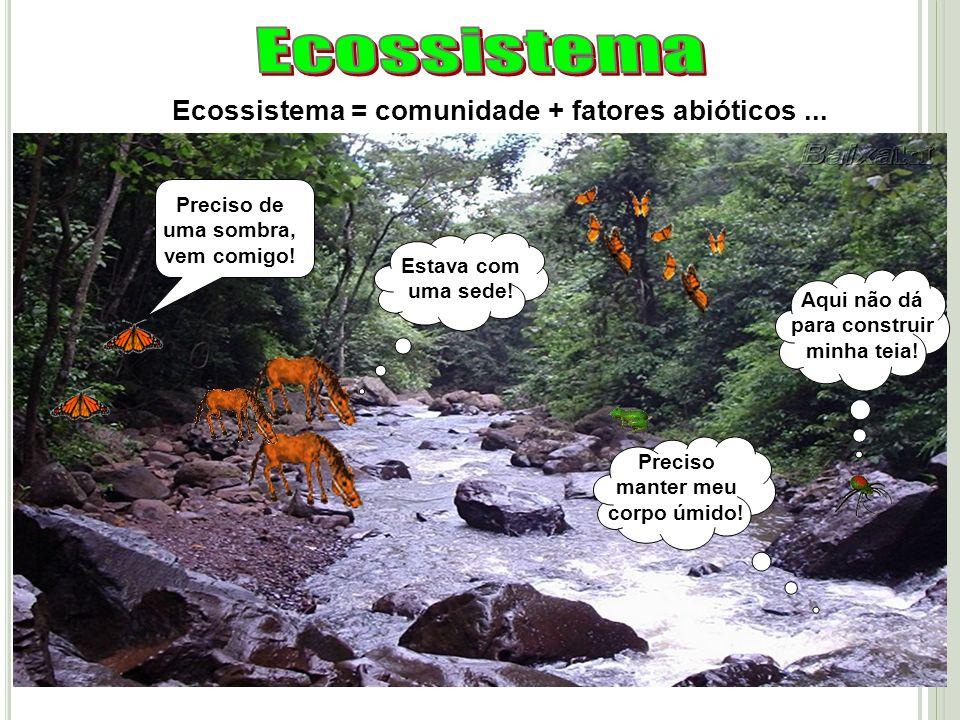 Ecossistema = comunidade + fatores abióticos... Estava com uma sede! Preciso manter meu corpo úmido! Aqui não dá para construir minha teia! Preciso de