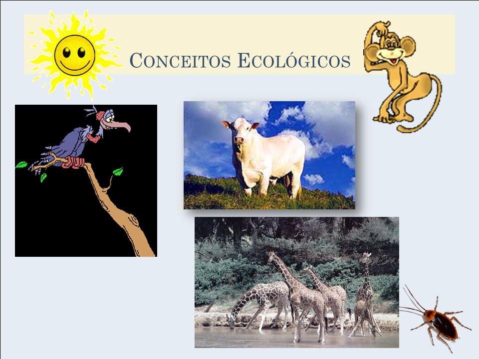 Ecossistema = comunidade + fatores abióticos...Estava com uma sede.