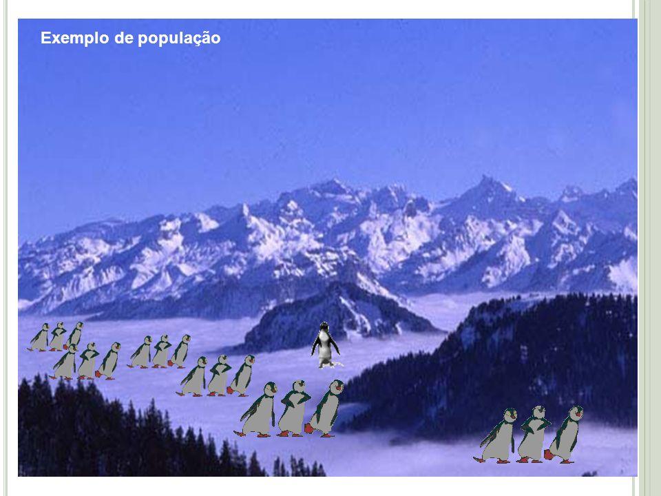 Exemplo de população