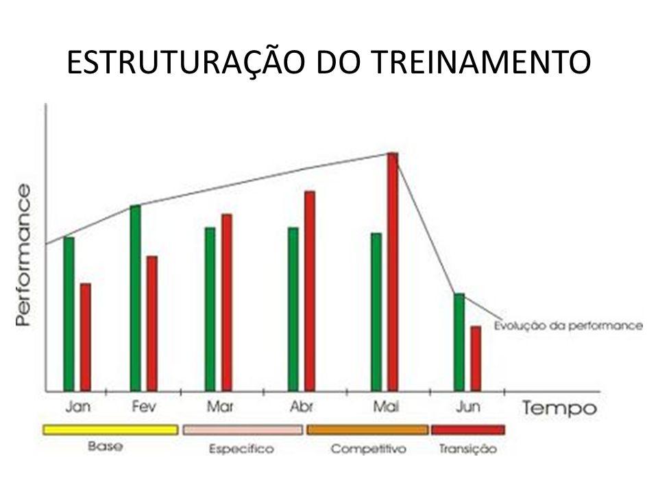 ESTRUTURAÇÃO DO TREINAMENTO