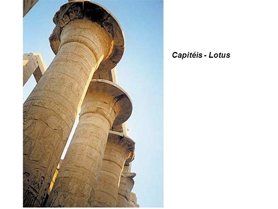 » Capitéis - Lotus