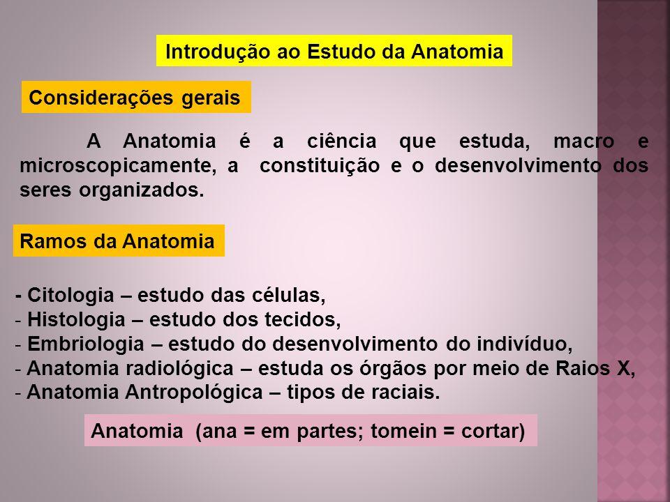 Introdução ao Estudo da Anatomia Considerações gerais A Anatomia é a ciência que estuda, macro e microscopicamente, a constituição e o desenvolvimento
