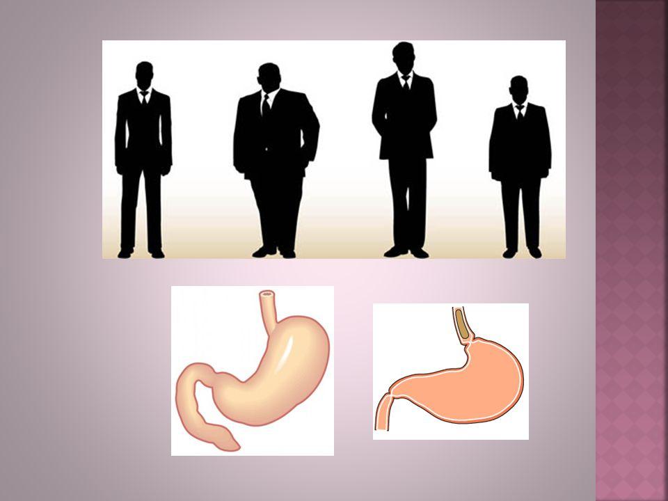 Anomalia e Monstruosidade Na variação anatômica não há prejuízo da função.