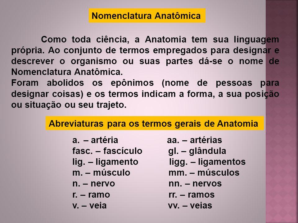 Nomenclatura Anatômica Como toda ciência, a Anatomia tem sua linguagem própria. Ao conjunto de termos empregados para designar e descrever o organismo