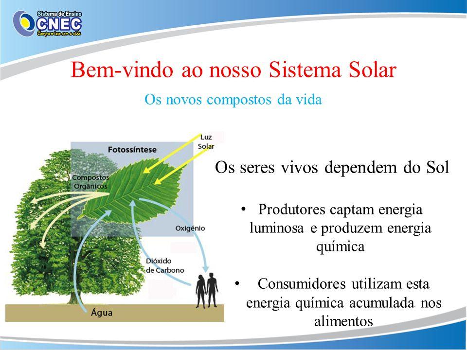 Bem-vindo ao nosso Sistema Solar Os novos compostos da vida Os seres vivos dependem do Sol Produtores captam energia luminosa e produzem energia quími