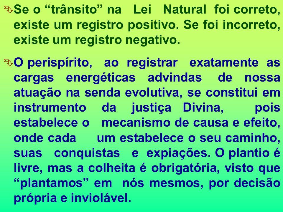 Todo o Universo está interrelacionado e interage, e as ações do Espírito ao transitar nele promovem interações energéticas importantes. As Leis Natura