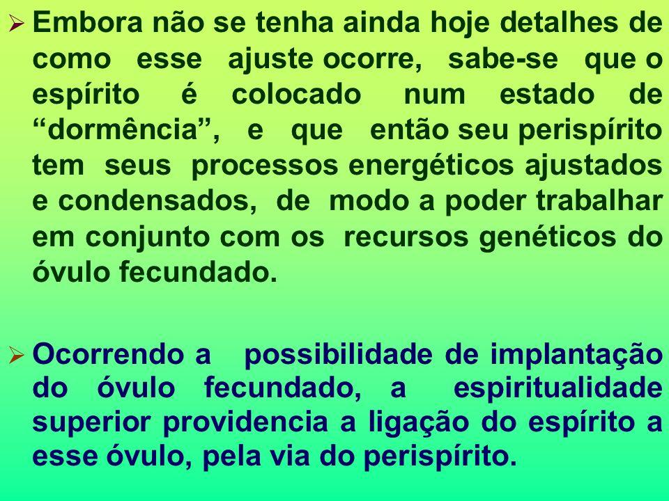 O Processo Reencarnatório O espírito que vai reencarnar deve ser preparado para tal. Isso se deve a necessidade de ajustar seu perispírito às necessid