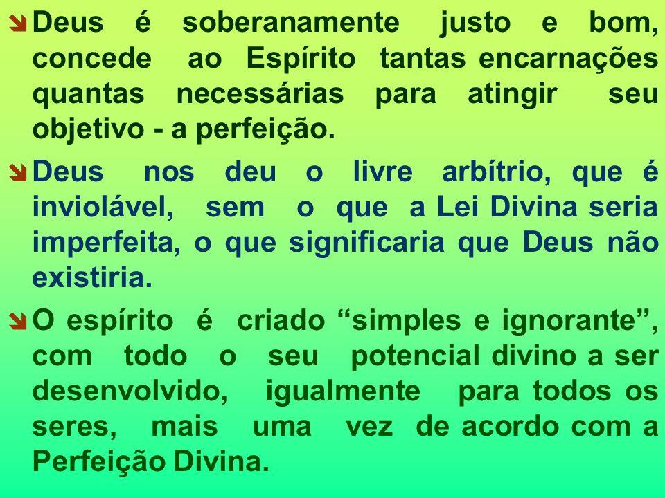 Deus é soberanamente justo e bom, concede ao Espírito tantas encarnações quantas necessárias para atingir seu objetivo - a perfeição.