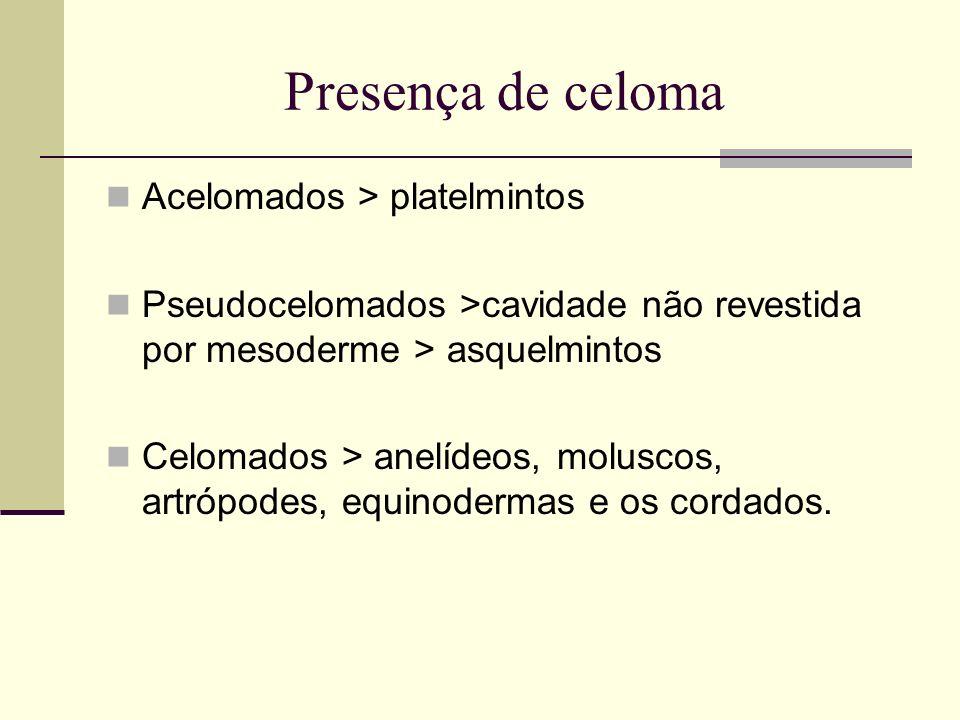 Presença de celoma Acelomados > platelmintos Pseudocelomados >cavidade não revestida por mesoderme > asquelmintos Celomados > anelídeos, moluscos, art