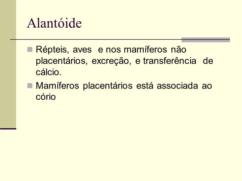 Alantóide Répteis, aves e nos mamíferos não placentários, excreção, e transferência de cálcio. Mamíferos placentários está associada ao cório