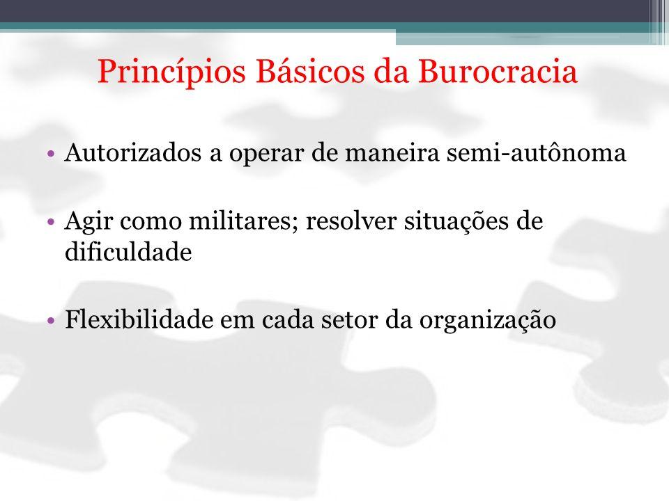 Princípios Básicos da Burocracia Autorizados a operar de maneira semi-autônoma Agir como militares; resolver situações de dificuldade Flexibilidade em
