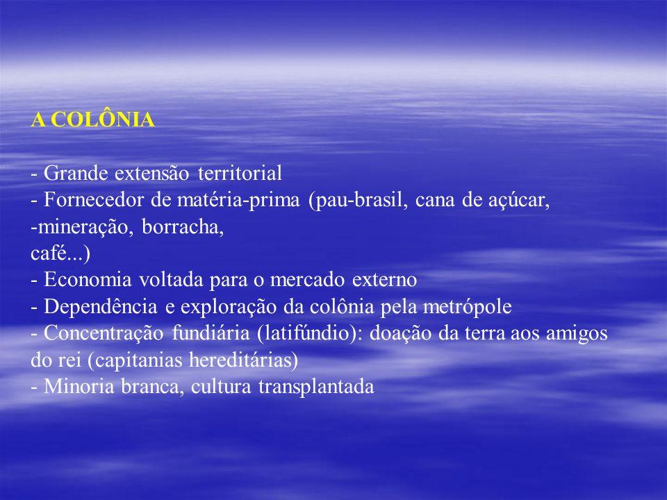 A COLÔNIA - Grande extensão territorial - Fornecedor de matéria-prima (pau-brasil, cana de açúcar, -mineração, borracha, café...) - Economia voltada p