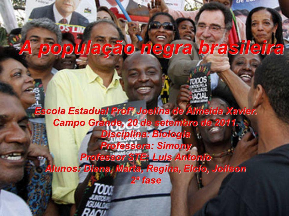 Conclusão A etnia negra, desde os primórdios da colonização brasileira, tem contribuído com sua mão de obra, cultura, alimentos, danças, religiões, palavras, entre outros.