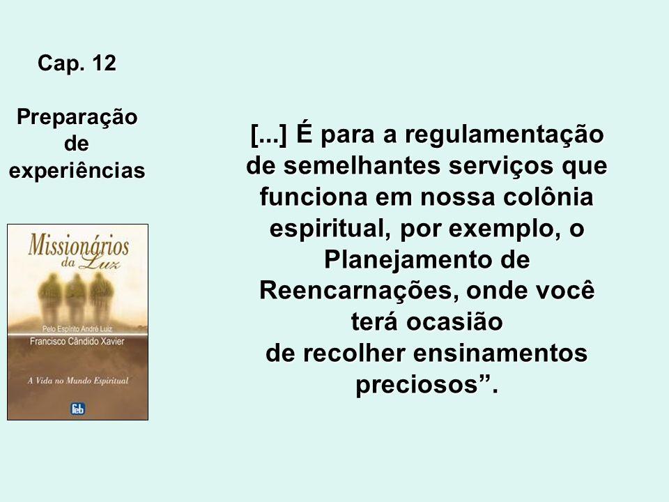 Cap. 8 OrganizaçãodosServiços Nossos serviços são distribuídos numa organização que se aperfeiçoa dia a dia, sob a orientação dos que nos presidem os