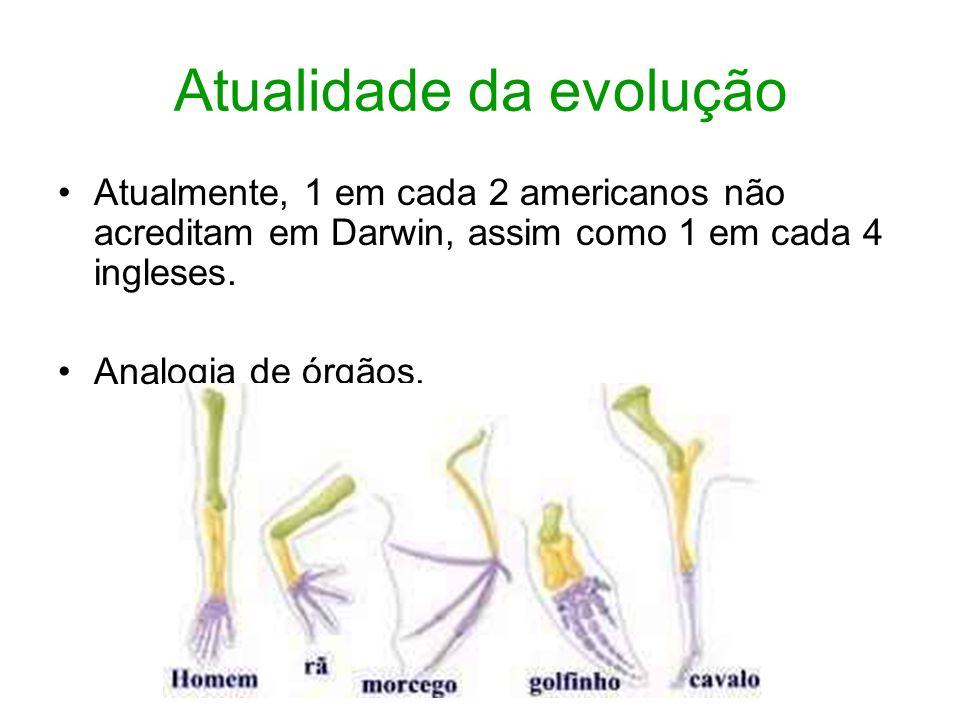 Atualidade da evolução Atualmente, 1 em cada 2 americanos não acreditam em Darwin, assim como 1 em cada 4 ingleses. Analogia de órgãos.