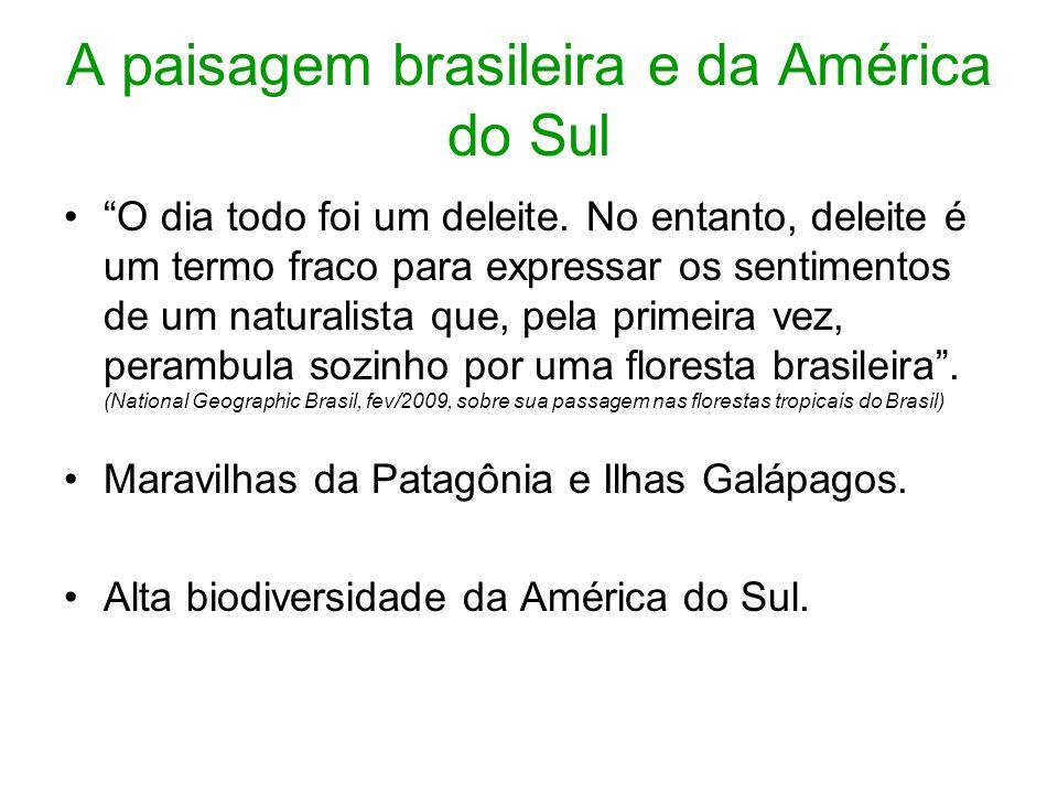 A paisagem brasileira e da América do Sul O dia todo foi um deleite. No entanto, deleite é um termo fraco para expressar os sentimentos de um naturali