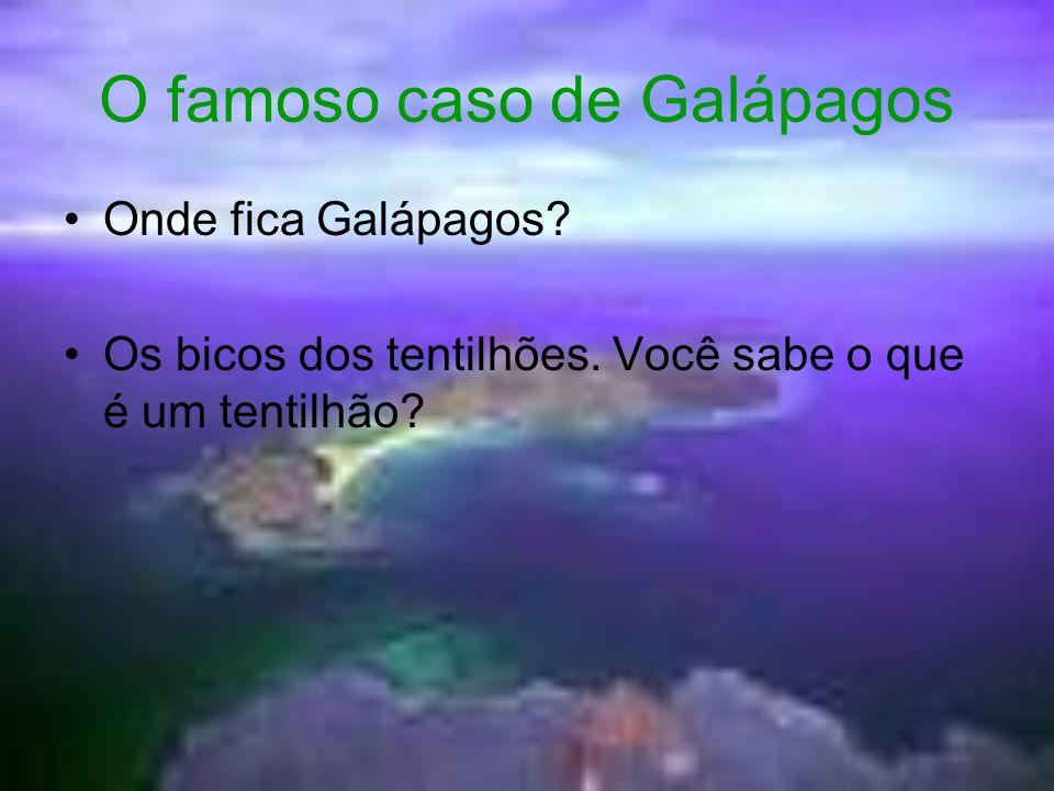 O famoso caso de Galápagos Onde fica Galápagos? Os bicos dos tentilhões. Você sabe o que é um tentilhão?
