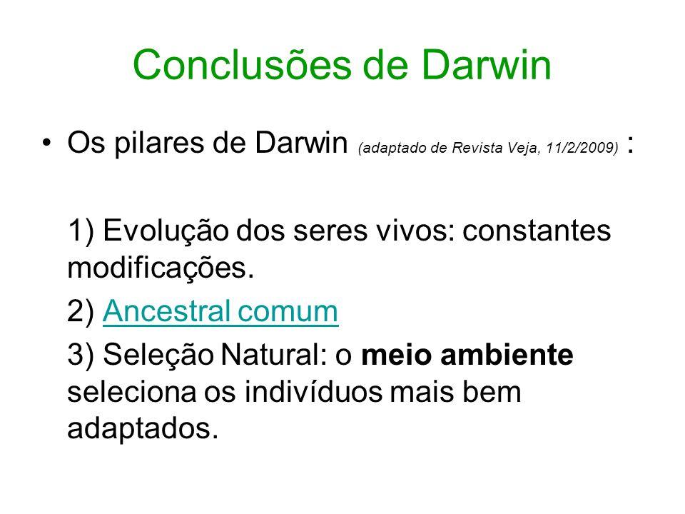 Conclusões de Darwin Os pilares de Darwin (adaptado de Revista Veja, 11/2/2009) : 1) Evolução dos seres vivos: constantes modificações. 2) Ancestral c