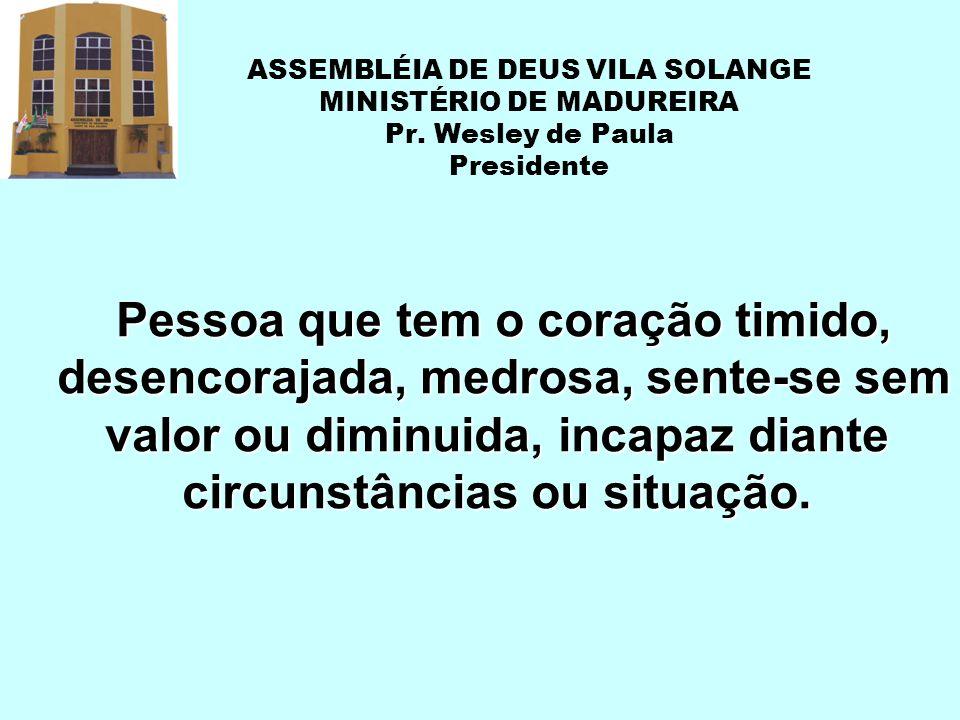 ASSEMBLÉIA DE DEUS VILA SOLANGE MINISTÉRIO DE MADUREIRA Pr. Wesley de Paula Presidente Pessoa que tem o coração timido, desencorajada, medrosa, sente-