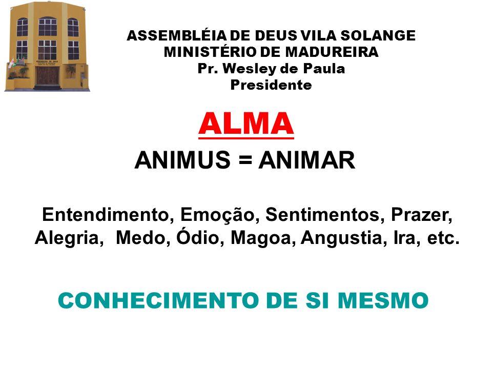 ASSEMBLÉIA DE DEUS VILA SOLANGE MINISTÉRIO DE MADUREIRA Pr. Wesley de Paula Presidente ALMA ANIMUS = ANIMAR CONHECIMENTO DE SI MESMO Entendimento, Emo