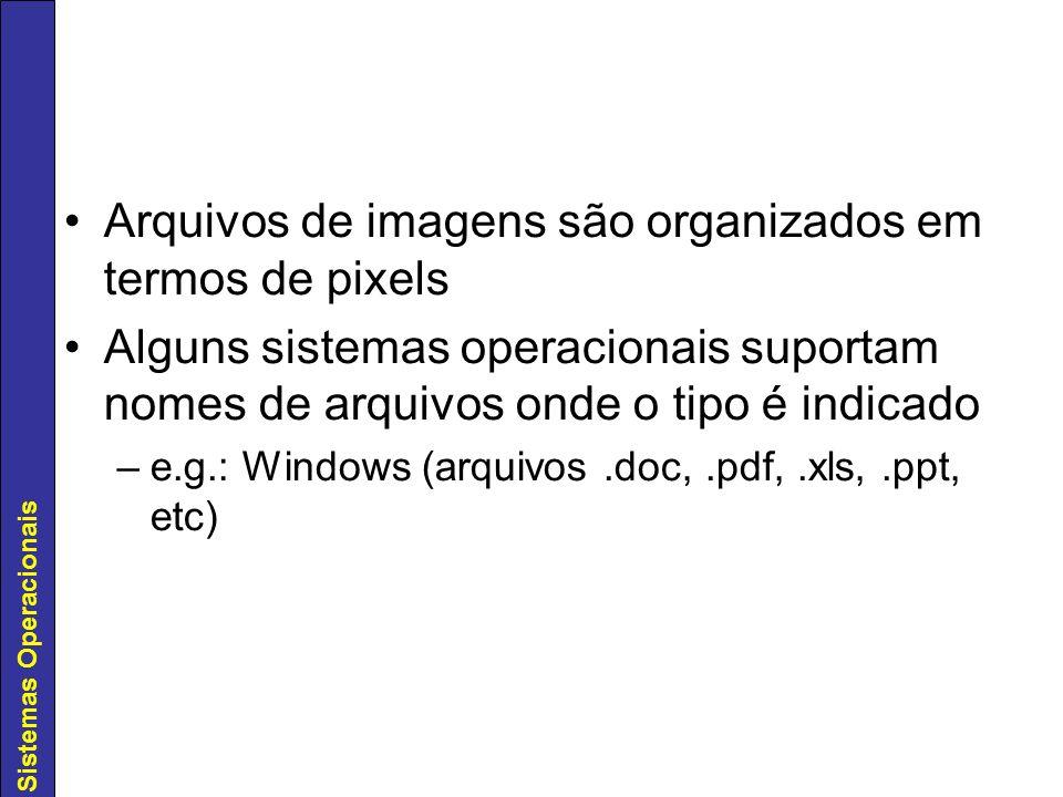 Sistemas Operacionais Arquivos de imagens são organizados em termos de pixels Alguns sistemas operacionais suportam nomes de arquivos onde o tipo é in