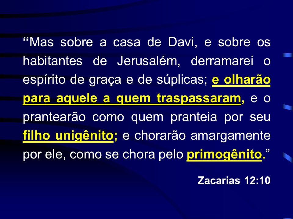 Mas sobre a casa de Davi, e sobre os habitantes de Jerusalém, derramarei o espírito de graça e de súplicas; e olharão para aquele a quem traspassaram,