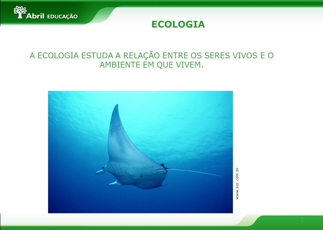 2 ECOLOGIA A ECOLOGIA ESTUDA A RELAÇÃO ENTRE OS SERES VIVOS E O AMBIENTE EM QUE VIVEM. www.ser.com.br