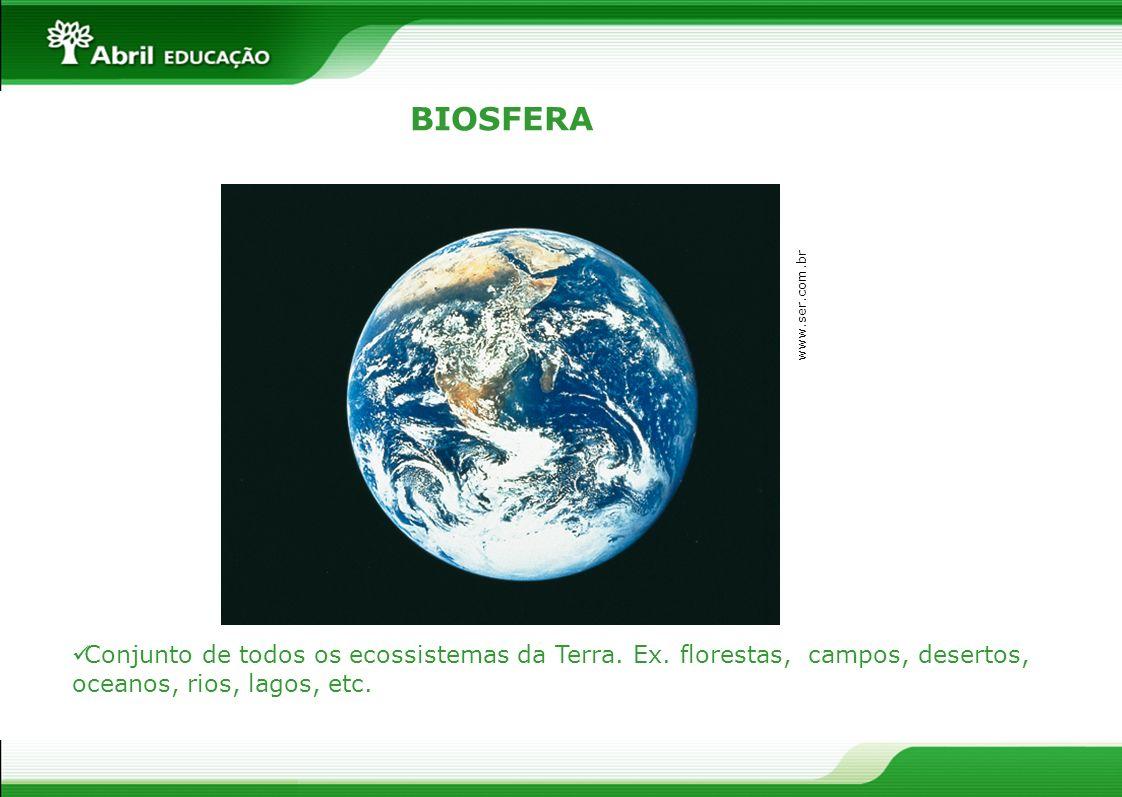 Conjunto de todos os ecossistemas da Terra. Ex. florestas, campos, desertos, oceanos, rios, lagos, etc. www.ser.com.br BIOSFERA