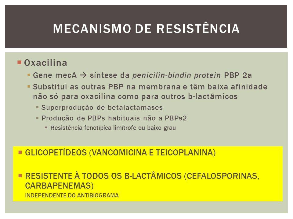 Oxacilina Gene mecA síntese da penicilin-bindin protein PBP 2a Substitui as outras PBP na membrana e têm baixa afinidade não só para oxacilina como pa