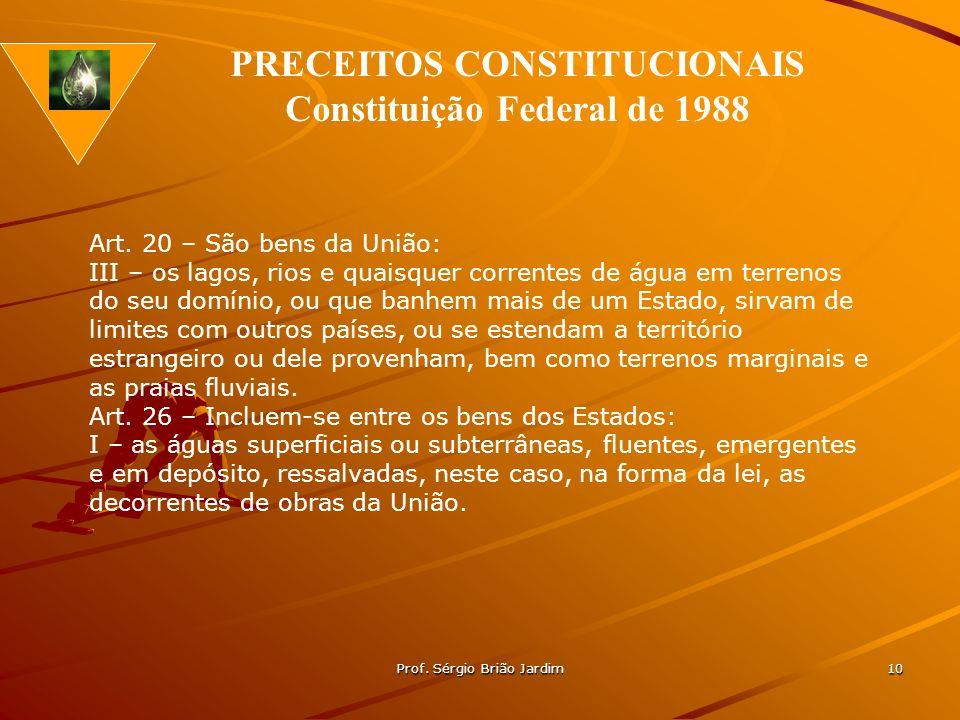 Prof. Sérgio Brião Jardim 10 Art. 20 – São bens da União: III – os lagos, rios e quaisquer correntes de água em terrenos do seu domínio, ou que banhem