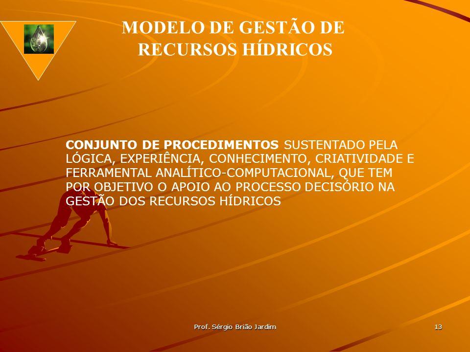 Prof. Sérgio Brião Jardim 13 CONJUNTO DE PROCEDIMENTOS SUSTENTADO PELA LÓGICA, EXPERIÊNCIA, CONHECIMENTO, CRIATIVIDADE E FERRAMENTAL ANALÍTICO-COMPUTA