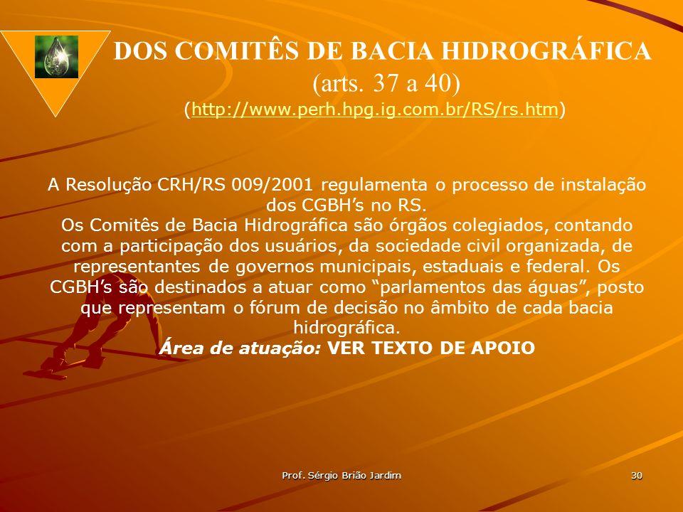 Prof. Sérgio Brião Jardim 30 A Resolução CRH/RS 009/2001 regulamenta o processo de instalação dos CGBHs no RS. Os Comitês de Bacia Hidrográfica são ór