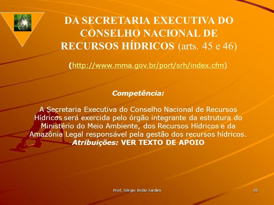Prof. Sérgio Brião Jardim 32 Competência: A Secretaria Executiva do Conselho Nacional de Recursos Hídricos será exercida pelo órgão integrante da estr