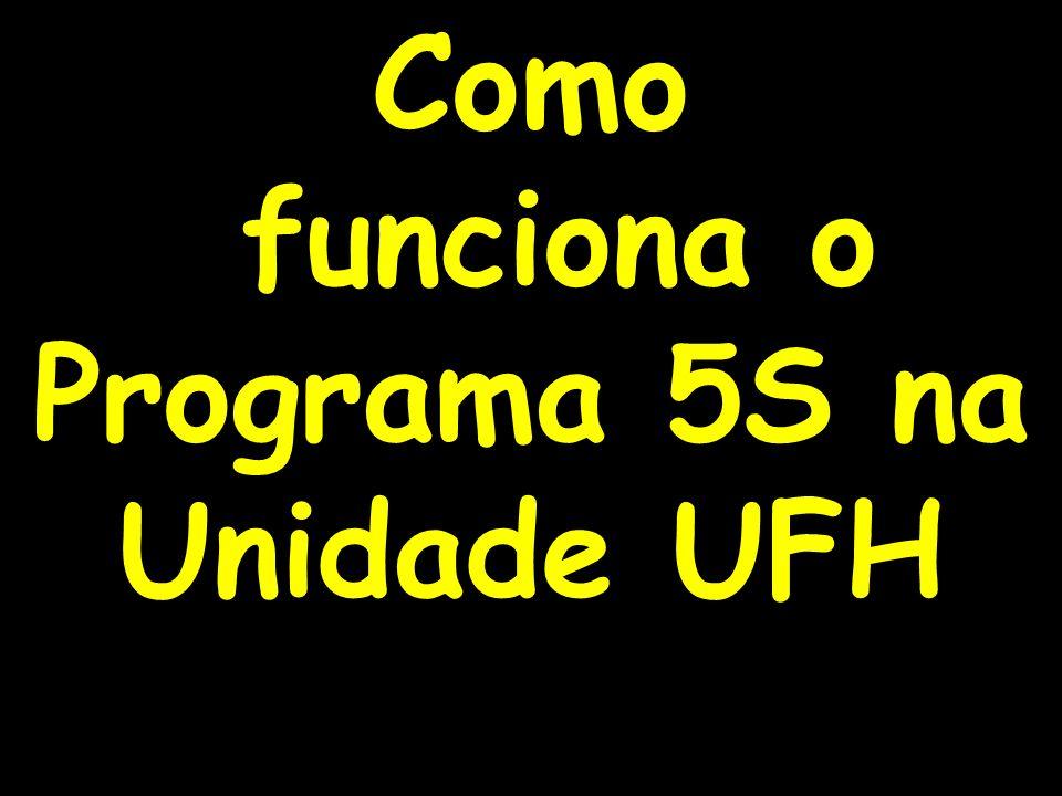 22 Como funciona o Programa 5S na Unidade UFH